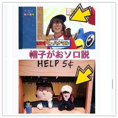花江夏樹と京本有加の犬の帽子写真